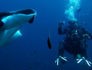 GALLERY: Top 10 diving sites in ASEAN
